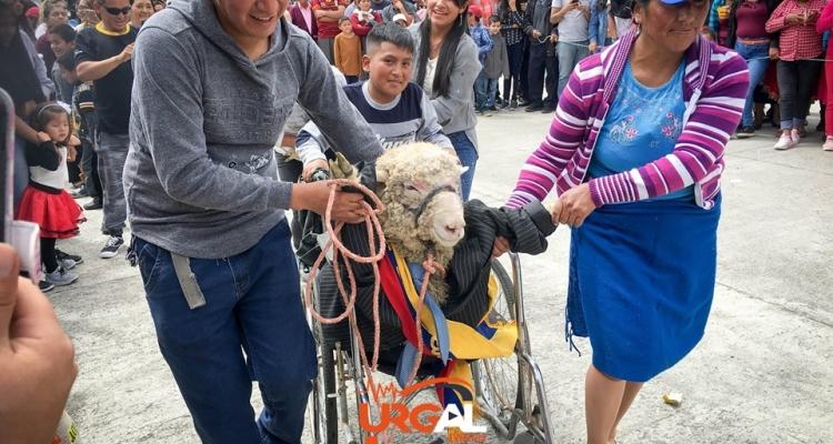 La 2da feria del cuy San Miguel de Porotos 2019.